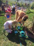 The Summer Play Garden